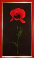 Галерея отшитых работ - Страница 2 136013--14413506-200
